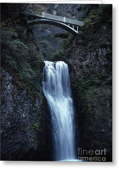 Greeting Card featuring the photograph  Multnomah Falls by Edward R Wisell
