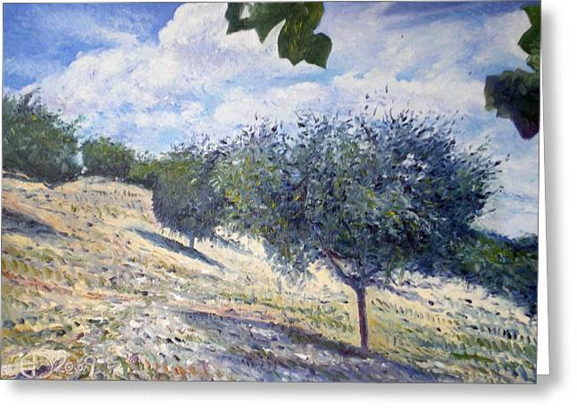 Olive Grove At Monte Cardeto Lazio Italy 2009  Greeting Card by Enver Larney