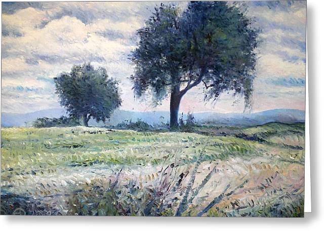 Olive Trees At Monte Cardeto Italy 2009  Greeting Card by Enver Larney