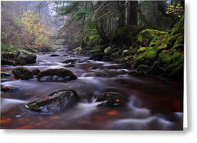 Reelig Glen Greeting Card