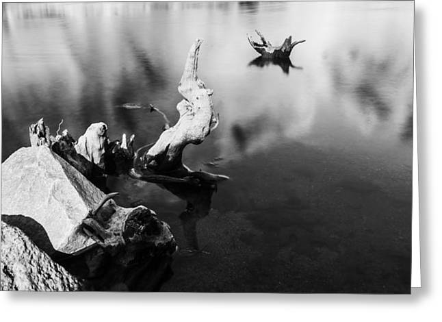Remnants In Water Greeting Card by Nathan Hillis