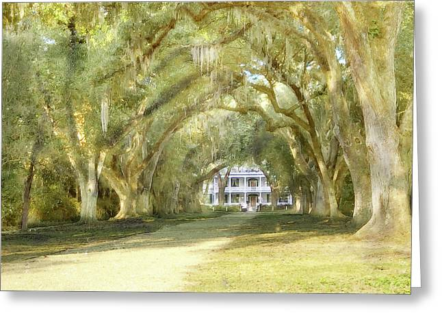Greeting Card featuring the photograph  Rosedown Plantation by John Hix
