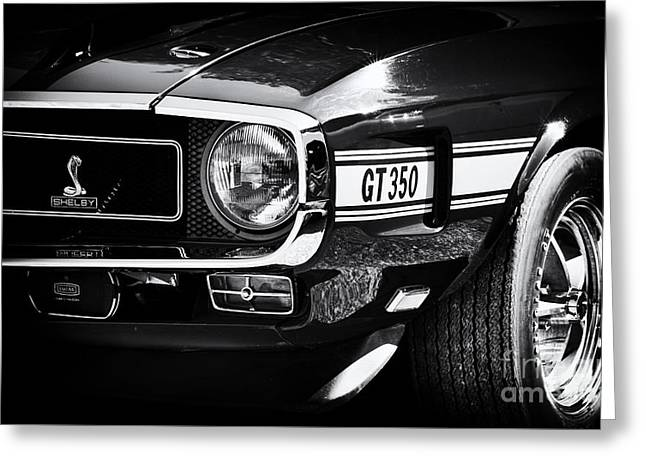 Shelby Gt350 Greeting Card by Tim Gainey