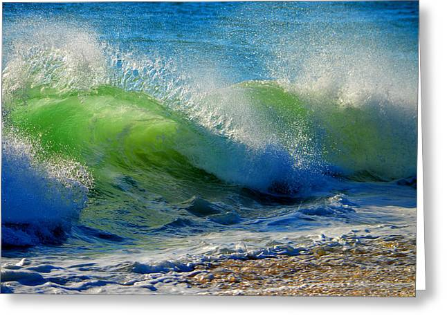 New England Ocean Greeting Cards - The Sidewinder  Greeting Card by Dianne Cowen
