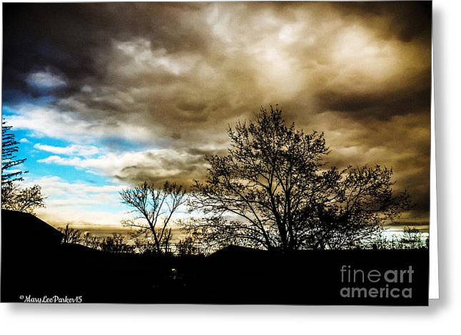 Storm  Coming  Greeting Card by MaryLee Parker