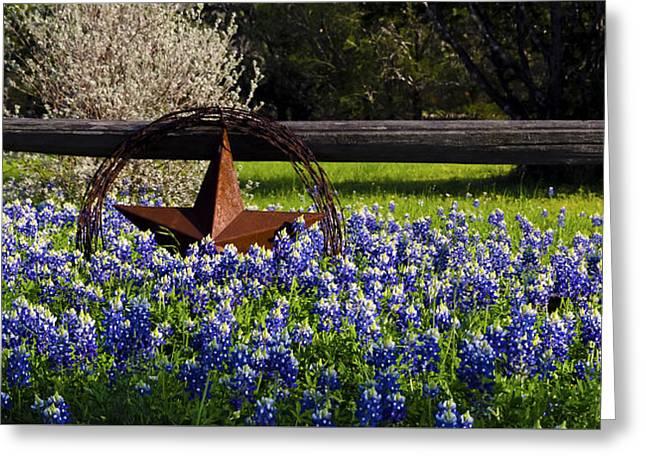 Texas Bluebonnets IIi Greeting Card