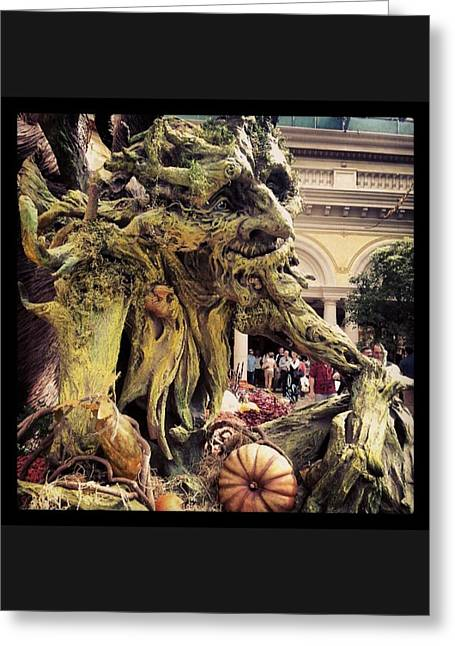 #trollgarden Greeting Card