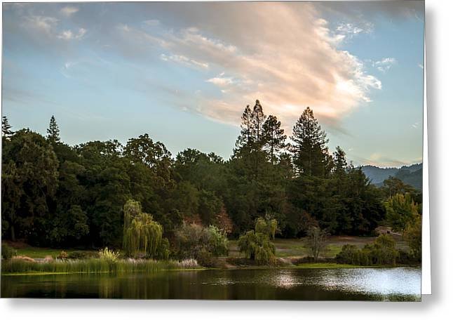 Tranquility Greeting Card by Robert Zuchowski