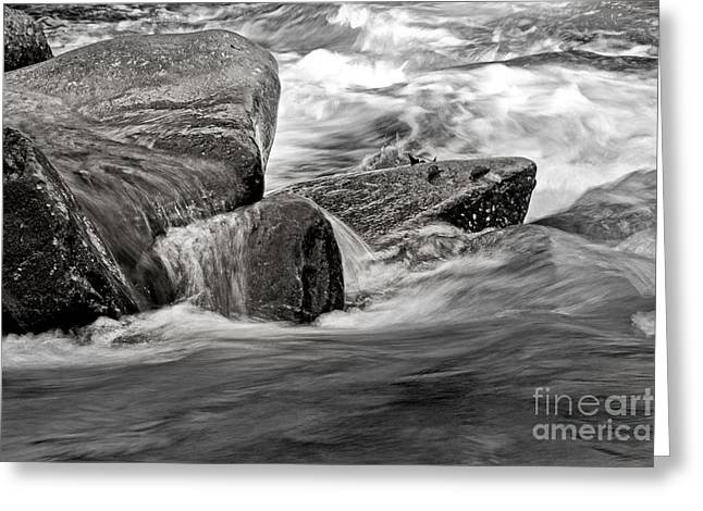 Water On The Rocks Greeting Card by Tom Gari Gallery-Three-Photography