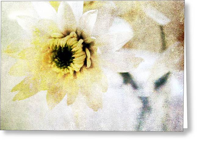 Blooms Mixed Media Greeting Cards -  White Flower Greeting Card by Linda Woods