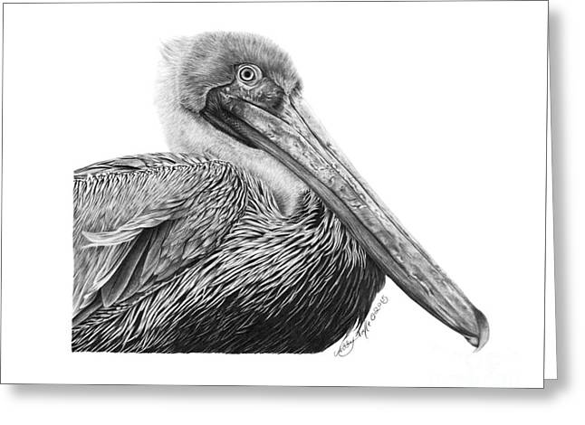 Greeting Card featuring the drawing 047 - Sinbad The Pelican by Abbey Noelle