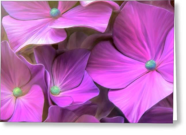 Hydrangea Florets Greeting Card