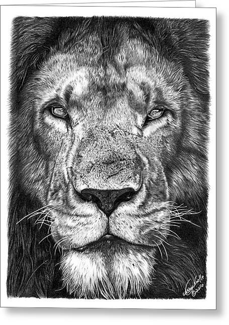 059 - Lorien The Lion Greeting Card