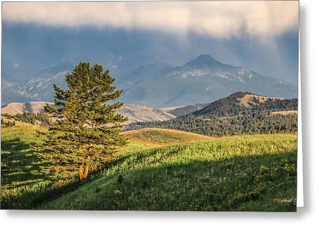 #0613 - Absaroka Range, Paradise Valley, Southwest Montana Greeting Card