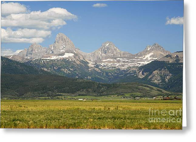 Grand Tetons  Greeting Card by Tomaz Kunst