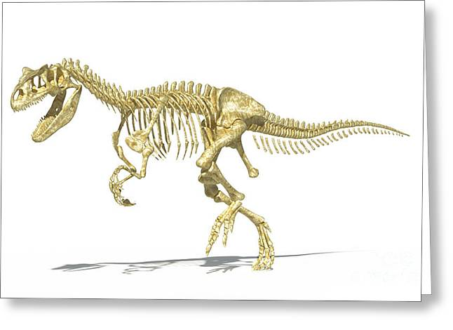 3d Rendering Of An Allosaurus Dinosaur Greeting Card by Leonello Calvetti