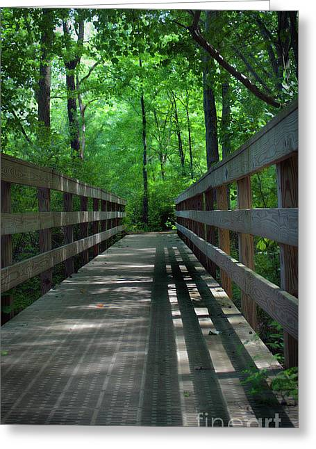 A Bridge To Somewhere Greeting Card by Skip Willits