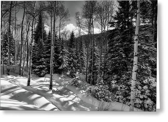 A Colorado Winter Greeting Card