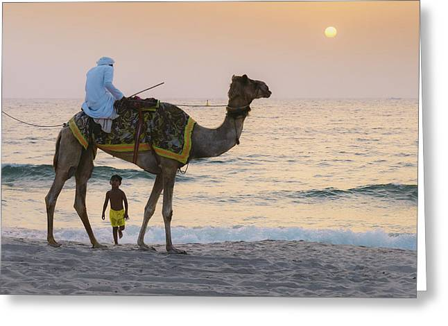 Little Boy Stares In Amazement At A Camel Riding On Marina Beach In Dubai, United Arab Emirates -  Greeting Card