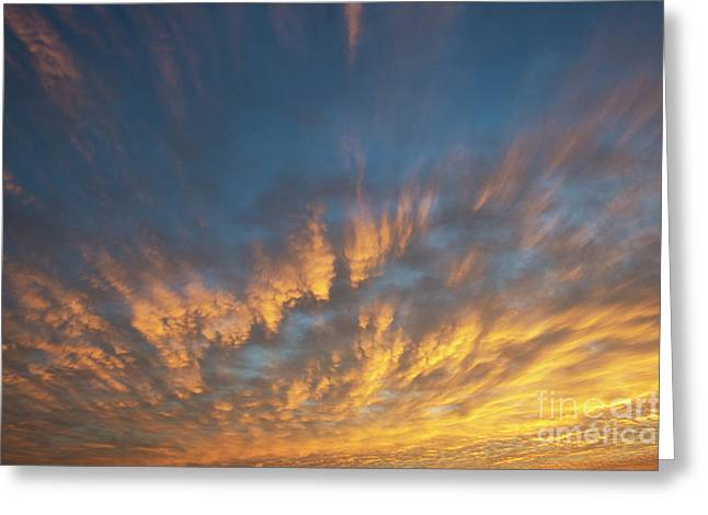 A New Dawn Greeting Card by Tim Gainey
