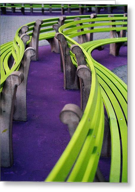 A Study In Purple And Green Greeting Card by Jane Linders