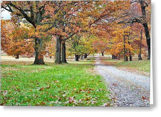 Greeting Card featuring the photograph A Walk In The Park by Robert Culver