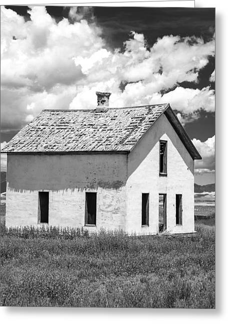 Greeting Card featuring the photograph Abandoned by Colleen Coccia