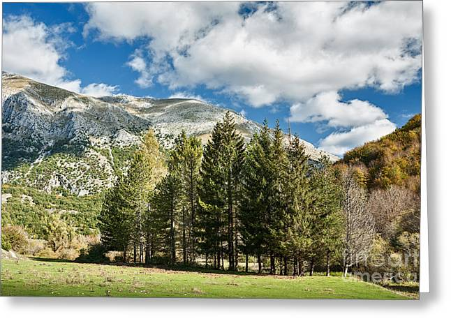 Abruzzo National Park, Italy Greeting Card