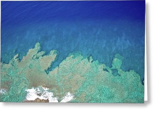 Greeting Card featuring the photograph Abstract Aerial Reef by Denise Bird