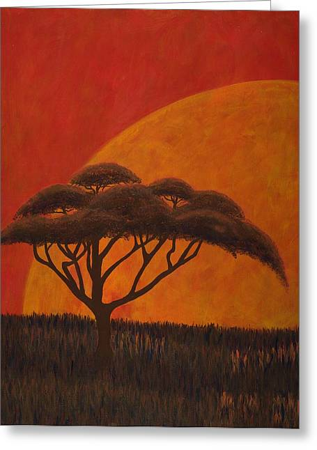 Acacia At Sunset Greeting Card by Diane Korf