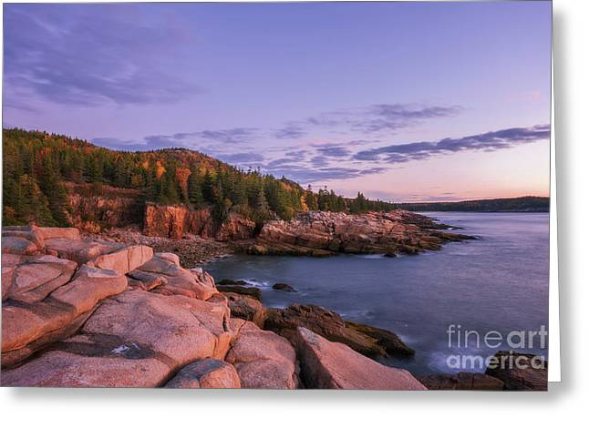 Greeting Card featuring the photograph Acadia Sunrise by Sharon Seaward