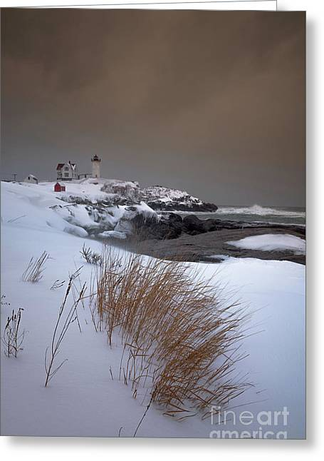 After The Storm Greeting Card by Scott Thorp