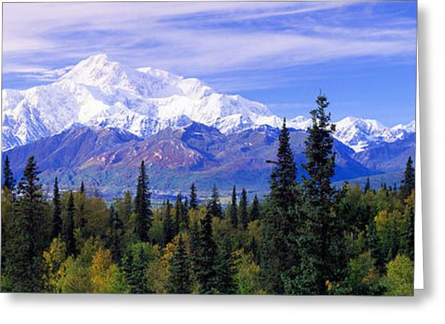 Alaska Range, Denali National Park Greeting Card by Panoramic Images