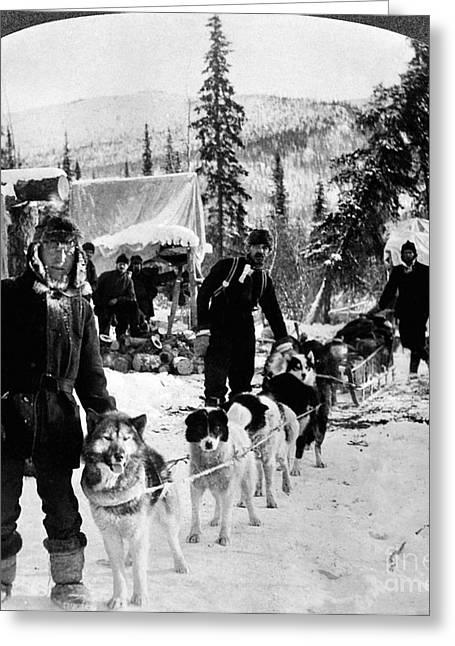 Alaskan Dog Sled, C1900 Greeting Card by Granger