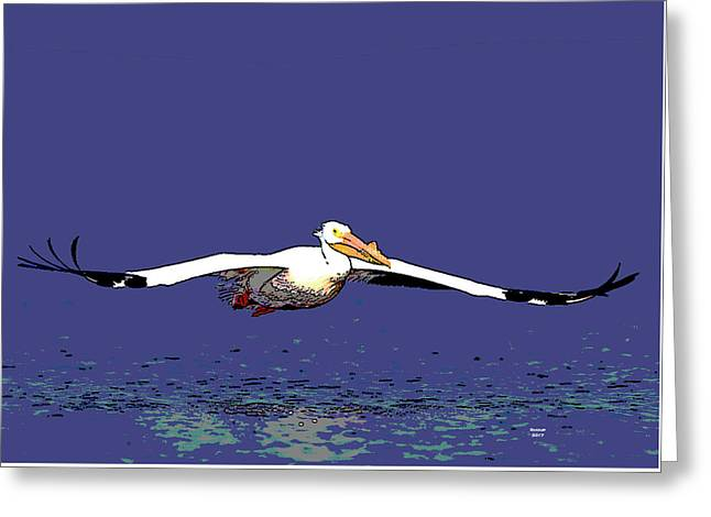 American White Pelican Greeting Card by Charles Shoup