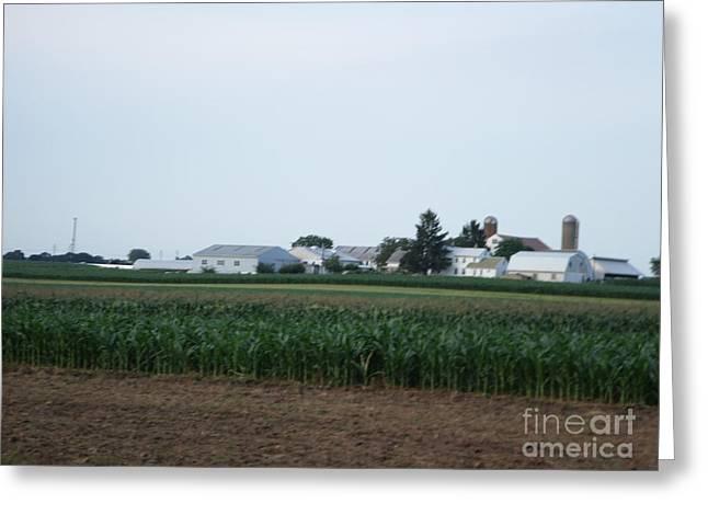 Amish Homestead 9 Greeting Card