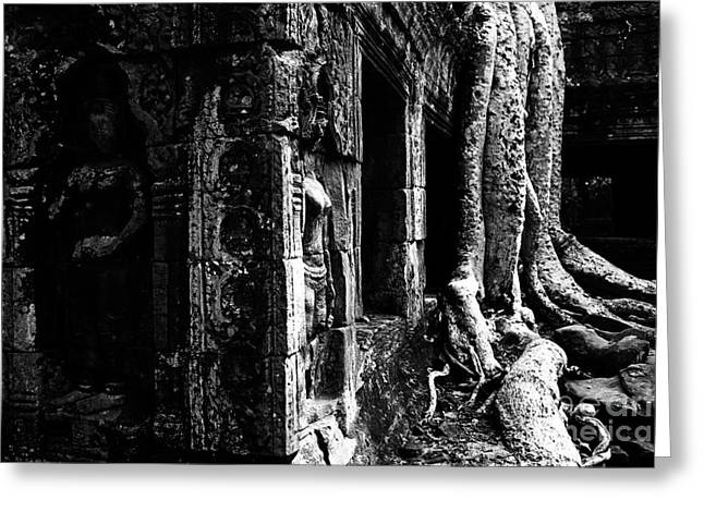 Angkor Wat Greeting Card by Stefano SmallBoy Tomassetti - Photodreamer