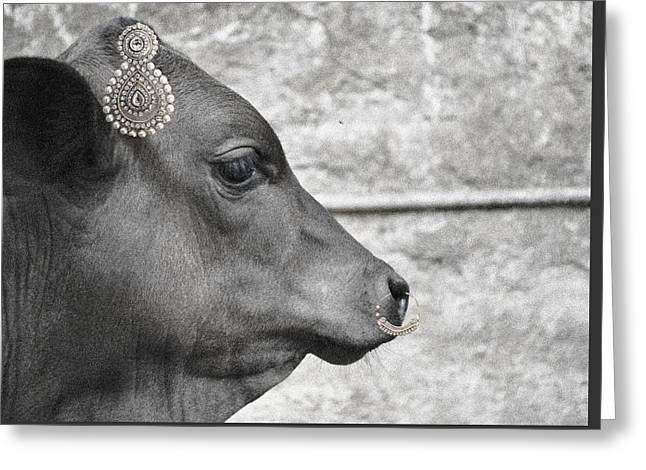 Animal Royalty 13 Greeting Card by Sumit Mehndiratta