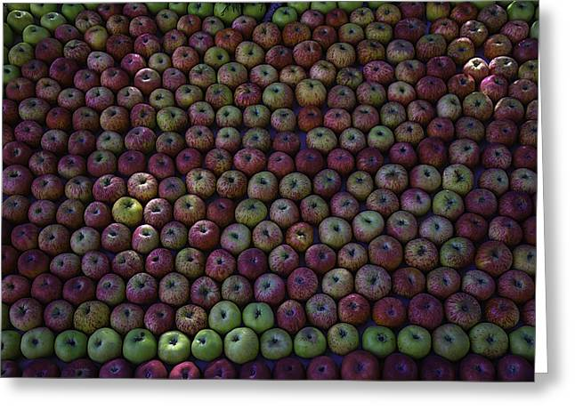Apple Harvest Greeting Card