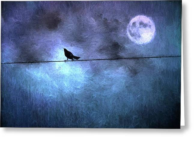 Greeting Card featuring the photograph Ask Me For The Moon by Jan Amiss Photography