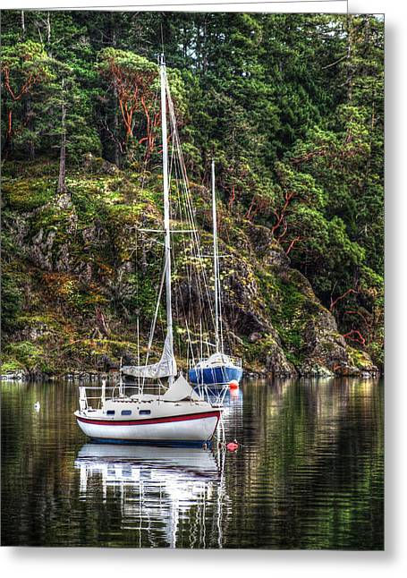 At Anchor Greeting Card by Randy Hall