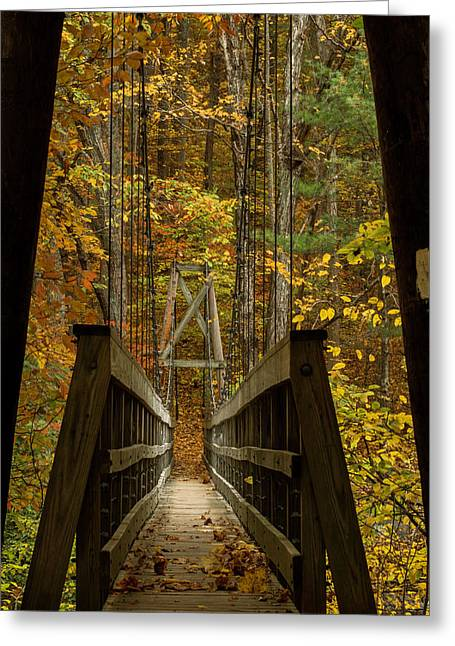Greeting Card featuring the photograph At Bridge by Kevin Blackburn