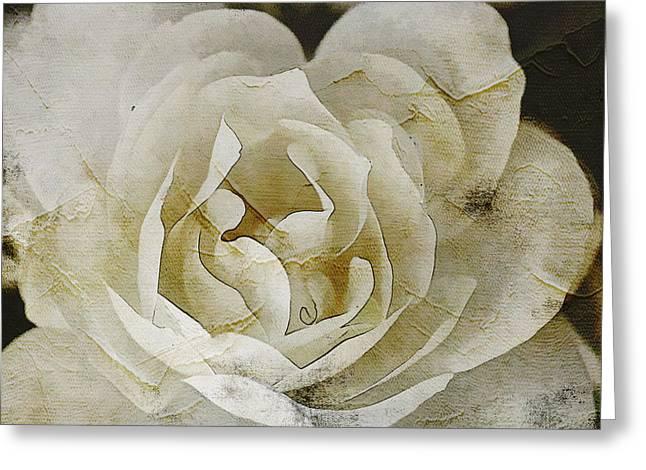 Aunt Lori's White Rose Greeting Card
