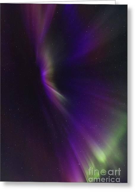 Aurora Corona In The Sky Of Iceland Greeting Card by Babak Tafreshi