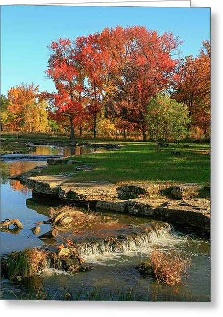 Autumn At The Deer Lake Creek Riffles In Forest Park St Louis Missouri Greeting Card by Garry McMichael
