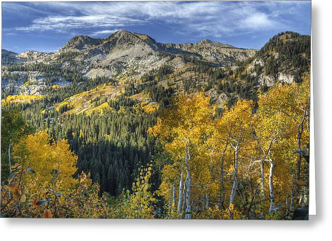 Autumn Colors In The Wasatch Mountains Greeting Card