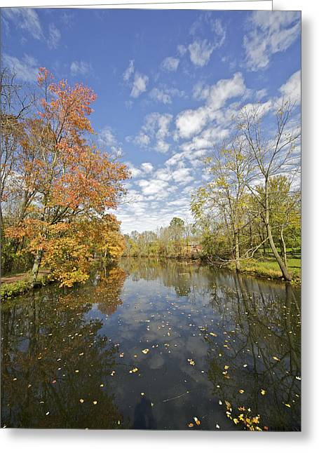 David Letts Greeting Cards - Autumn Colors on the Delaware and Raritan Canal Greeting Card by David Letts