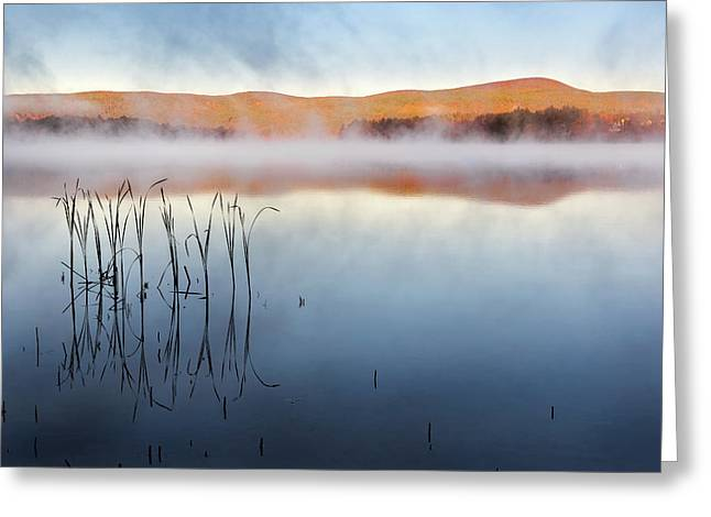 Autumn Fog Greeting Card by Bill Wakeley