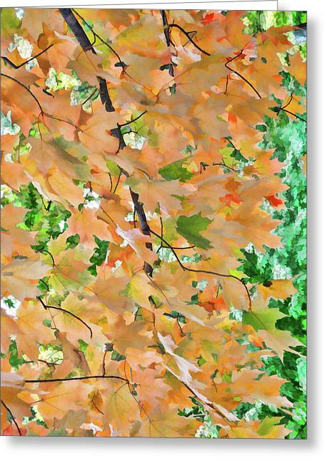 Autumn Foliage 3 Greeting Card by Lanjee Chee