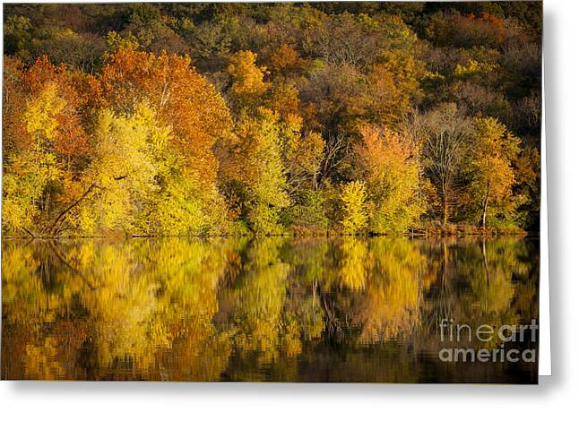 Autumn Foliage Greeting Card by Brian Jannsen